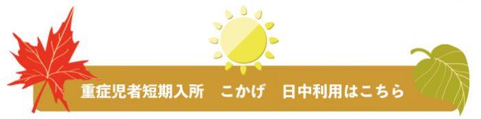 day-b